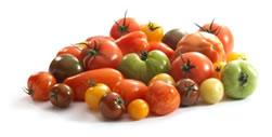 Reynolds Fruit & Vegetables